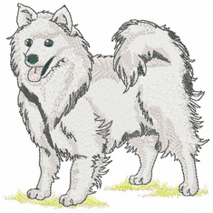 eskimo004 American Eskimo Dog (small or large design)