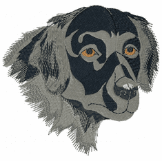 fcr001 Flat Coated Retriever  (small or large design)