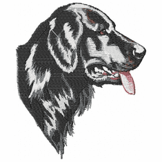 fcr004 Flat Coated Retriever  (small or large design)