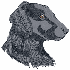 fcr005 Flat Coated Retriever  (small or large design)
