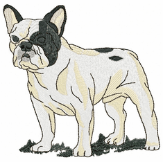 frenchbull003 French Bulldog (small or large design)