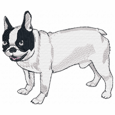 frenchbull006 French Bulldog (small or large design)