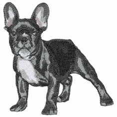 frenchbull014 French Bulldog (small or large design)