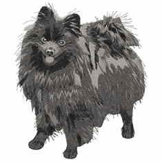 germanspitz006 German Spitz (small or large design)