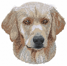 golden131 Golden Retriever (small or large design)