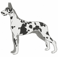 greatdane007 Great Dane (small or large design)