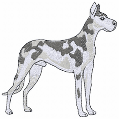 greatdane018 Great Dane (small or large design)