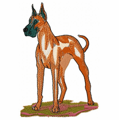 greatdane020 Great Dane (small or large design)
