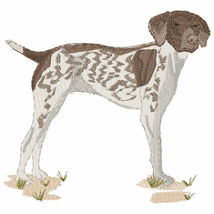 gsp021 German Shorthaired Pointer (small or large design)