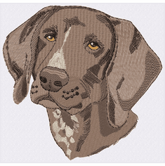 gsp031 German Shorthair Pointer (small or large design)