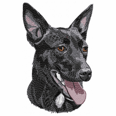 kelpie008 Kelpie  (small or large design)