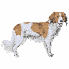 kork005 Kooikerhondje (small or large design)