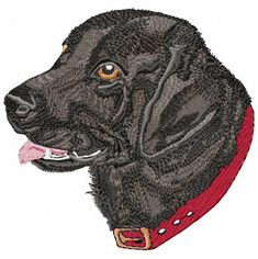 lab002 Labrador Retriever (small or large design)