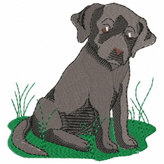 lab010 Labrador Retriever (small or large design)