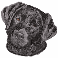 lab011 Labrador Retriever (small or large design)