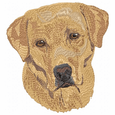 lab030 Labrador Retriever (small or large design)