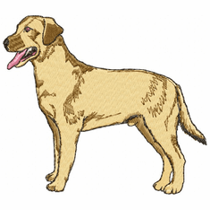 lab033 Labrador Retriever (small or large design)