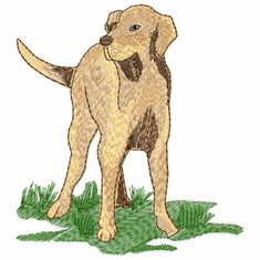 lab039 Labrador Retriever (small or large design)