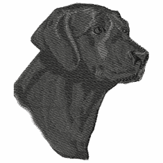 lab050 Labrador Retriever (small or large design)