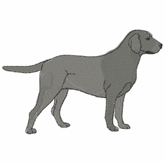 lab051 Labrador Retriever (small or large design)