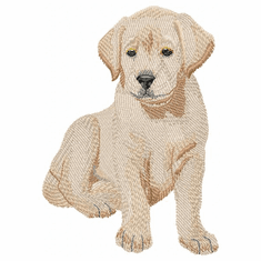 lab063 Labrador Retriever (small or large design)
