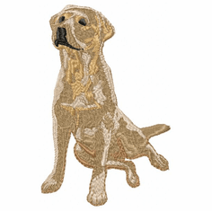 lab064 Labrador Retriever (small or large design)