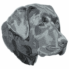 lab076 Labrador Retriever (small or large design)