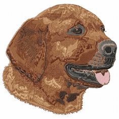 lab080 Labrador Retriever (small or large design)
