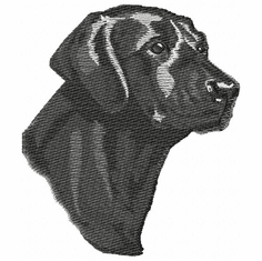 lab089 Labrador Retriever (small or large design)