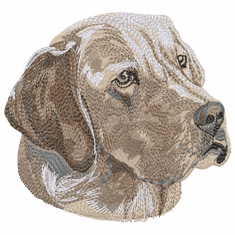 lab090 Labrador Retriever (small or large design)
