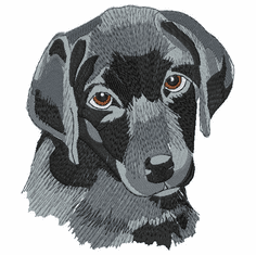 lab134 Labrador Retriever (small or large design)