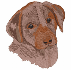 lab136 Labrador Retriever (small or large design)