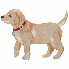 lab139 Labrador Retriever (small or large design)