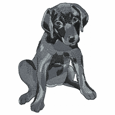 lab140 Labrador Retriever (small or large design)