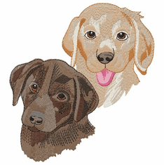 lab146 Labrador Retriever (small or large design)