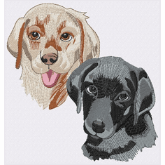 lab148 Labrador Retriever (small or large design)
