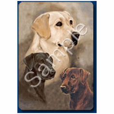Labrador Retriever Playing Cards