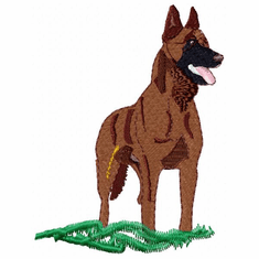 malinois002 Belgian Malinois (small or large design)