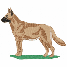 malinois008 Belgian Malinois (small or large design)