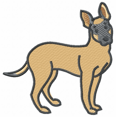 malinois016 Belgian Malinois (small or large design)