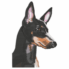 man003 Manchester Terrier (small or large design)