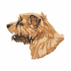 norfolk001 Norfolk Terrier (small or large design)
