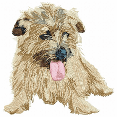 norfolk008 Norfolk Terrier (small or large design)