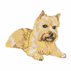 norwich005 Norwich Terrier (small or large design)