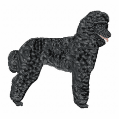 pood020 Poodle (small or large design)