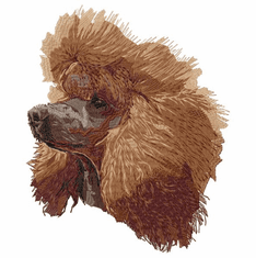 poodle091 Poodle (small or large design)