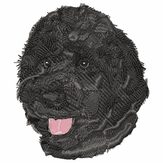 pwd011 Portuguese Water Dog (small or large design)