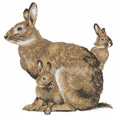 rabbit009 Rabbit with babies (small or large design)
