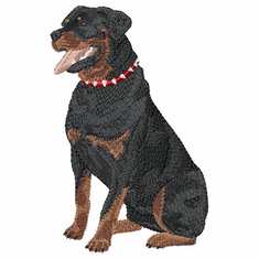 rott009 Rottweiler (small or large design)