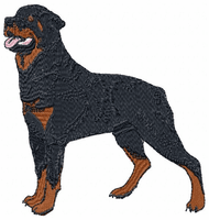 rott010 Rottweiler (small or large design)